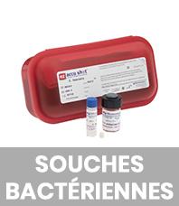 Souches bactériennes