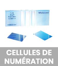 Cellules de numérotation